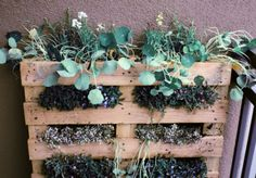 For outside the home.  Another pallet board use!