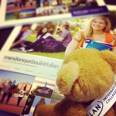 The #KaplanBear also speaks #Thai, here he is reading some KIC brochures. by KIC Pathways - University Preparation Courses, via Flickr