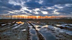 Países Bajos • Gelderland Lochem