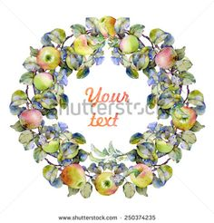 Watercolor image of a wreath-frame made of branches with green leaves and red and green ripe and juicy apples. - stock photo