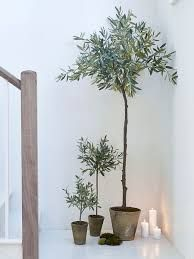 Our range of faux flowers, faux plants, fake plants, artificial house plants uk, large artificial plants and faux flora makes it easy to create displays that last.