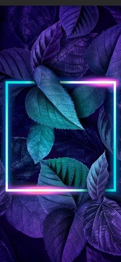 HD Phone Wallpaper and Backgrounds Chill Wallpaper, Flower Phone Wallpaper, Neon Wallpaper, Wallpaper Backgrounds, Iphone Wallpaper, Pretty Wallpapers, Live Wallpapers, Whatsapp Logo, Neon Lighting
