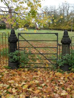 Garden Gates Fences And Stone Walls On Pinterest Old