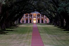 love southern plantation homes; what I wouldn't give to have these tree on our lot NOW!!!!!