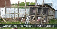 Construire une volière ou enclos autour d'un poulailler - Grillage à poule pour poulailler. Instructions: http://www.jardinage-quebec.com/guide/construire-un-poulailler/poulailler-2.html