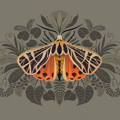 Tiger moth - playing with the Procreate symmetry tool and trying to figure out s. - Tiger moth – playing with the Procreate symmetry tool and trying to figure out some foliage for m - Love Drawings, Art Drawings, Botanical Illustration, Illustration Art, Butterfly Illustration, Tiger Moth, Bug Art, Butterfly Art, Butterflies