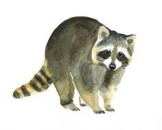 Sweet little Animals Watercolor Animals, Watercolor Paintings, Raccoon Tattoo, Racoon, Woodland Creatures, Wildlife Art, Cartoon Drawings, New Art, Painting & Drawing