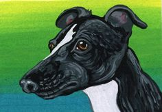 ACEO ATC Black and White Whippet Dog Pet Art Original Painting-Carla Smale…