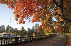 Vancouver - Canadá Muito arborizada e cheia de parques, é uma metrópole mais do que cênica entre o mar e as Montanhas Rochosas. Eleita a melhor cidade do mundo para se viver, segundo a revista The Economist em 2011, dá para curtir a cidade com um pé na natureza e o outro nas delícias da vida urbana. A melhor época para visitá-la é entre abril e outubro.