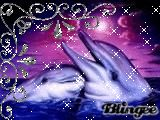glitter dolphins graphics and comments Beautiful Love Pictures, Love You Images, Animals Beautiful, Dolphin Painting, Dolphin Art, Good Morning Animals, Dolphin Images, Bible Photos, Dolphins Tattoo