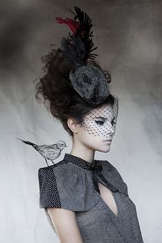 hat, veil, flower and bird