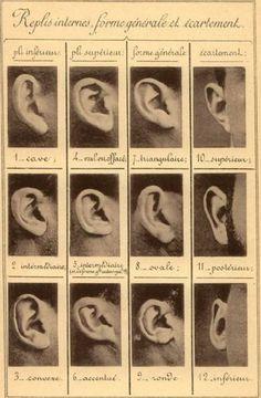 Ear classification