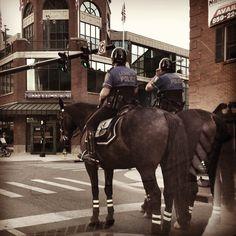 Police and their horses. Beautiful. Lexington Kentucky