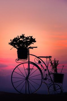 Bicycle Silhouette at Sunset