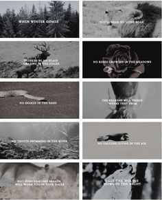 winter is coming Game Of Trones, Hbo Game Of Thrones, Chronicles Of Narnia, Winter Is Coming, Geek, Fandoms, Fire, Songs, Quotes