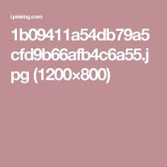 1b09411a54db79a5cfd9b66afb4c6a55.jpg (1200×800)