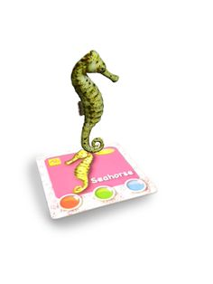 ARC: Aqua Augmented Reality interactive learning cards from Amagicland, 3D animations, sound & music. www.amagicland.com