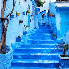 A four-hour drive from the bustling city of Fez brings you to Chefchaouen, a village high in the Rif Mountains, known for its labyrinthine medina bathed entirely in shades of blue.