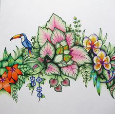 I actually finished a (small) page! Swipe for close-ups. I have a lot to learn about backgrounds, but at least I'm getting better at… Colouring Pages, Adult Coloring Pages, Coloring Books, Magical Jungle Johanna Basford, Watercolor Pencil Art, Jungle Flowers, Johanna Basford Secret Garden, Secret Garden Colouring, Johanna Basford Coloring Book