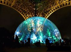 The Eiffel Tower has its own snow globe with 120 trees, until January 18, 2015
