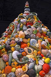 Gourd Art Photograph - Mountain Of Gourds And Pumpkins by Garry Gay