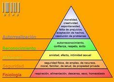Conocimientos y aprendizajes
