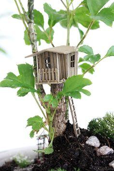 DIY Mini Garden - Gestalte deinen eigenen Minigarten