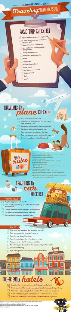 Traveling with your dog infographic from HerePup.com