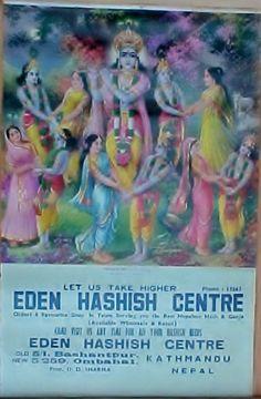 Krishna Hashish