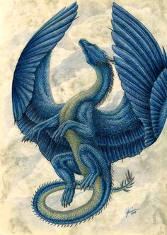 I promised you some art and here it is: Saphira, Bjartskular, from Eragon. I kind of like the books, though the latest one wasn't to my liking due to it. Robin Hobb, Magical Creatures, Fantasy Creatures, Inheritance Cycle, Christopher Paolini, Beautiful Dragon, Cool Dragons, Dragon Artwork, Dragon Pictures