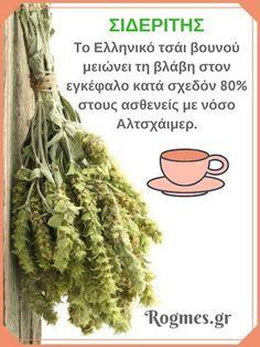 Το Ελληνικό τσάι βουνού έχει χρησιμοποιηθεί για αιώνες και είναι το πιο δημοφιλές ελληνικό βότανο. Ο Ιπποκράτης συνέστησε το Ελληνικό αυτό βότανο σαν διεγερτικό, λόγω της υψηλής περιεκτικότητάς του σε σίδηρο. Στο παρακάτω άρθρο, θα ανακαλύψετε πως το τσάι του βουνού βοηθά στην αντιμετώπιση του Αλτχάιμερ. Health And Fitness Articles, Health And Wellness, Health Fitness, Herbal Remedies, Health Remedies, Natural Remedies, Cheap Diet, Post Workout Food, Health Trends