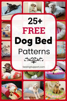 25 free dog bed sewing patterns, projects, and tutorials for fabric dog beds and pillows. Many simple and easy designs. Instructions for how to make your own homemade dog bed. Cute Dog Beds, Diy Dog Bed, Dog Pillow Bed, Homemade Dog Bed, Pet Beds Diy, Sewing Patterns Free, Free Sewing, Clothes Patterns, Diy Bett