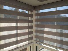 McAllister Interiors - Duplex Blinds by RM Window Blinds