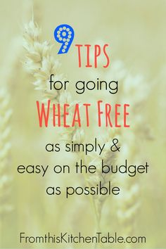 Tips for Going Wheat Free on a budget and without your family being miserable - From This Kitchen Table