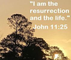 "GOD Morning from Trinity, TX Today is Tuesday 3-23-2021 Day 82 in the 2021 Journey Make It A Great Day, Everyday! Just Believe! Today's Scriptures: John 11:25 (NKJV) Jesus said to her, ""I am the resurrection and the life. He who believes in Me, though he may die, he shall live. Scripture For Today, Jan 1, Just Believe, Jesus Quotes, Scriptures, Tuesday, Journey, God, Sayings"