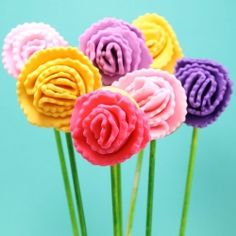 carnation flower cookie pops