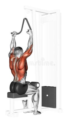 End Of The Upper Block Narrow Grip Stock Illustration - Image: 44124246 Fitness Workouts, At Home Workouts, Fitness Tips, Fitness Motivation, Muscle Fitness, Mens Fitness, Fitness Studio Training, Cable Workout, Chest Workouts