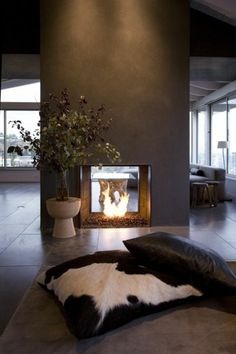 Bio ethanol fireplace as a room divider and two pillows on the floor Source by fiedekruse Fireplace Box, Bioethanol Fireplace, Modern Fireplace, Fireplace Design, Fireplace Glass, Installing A Fireplace, Glass Room Divider, Room Dividers, Fireplace Pictures