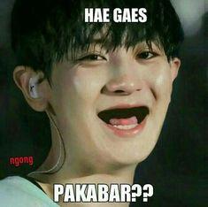 Memes Funny Faces, Funny Kpop Memes, Exo Memes, Cute Memes, D O Exo, Right Meme, K Meme, Drama Memes, Cartoon Jokes