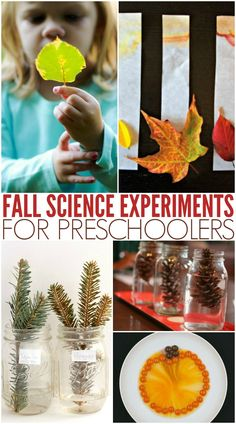 Must-Try Simple Fall Science Activities