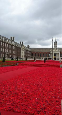 The 5000 Poppies Project from Australia. Rhs Flower Show, Poppies, Chelsea, Louvre, Australia, London, Mansions, House Styles, Building
