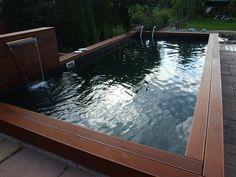 Swimming bio pond