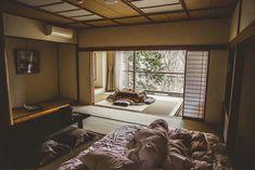 Japan's Off-the-beaten-track bucket list! Beautiful Places In Japan, Kyushu, Japan Travel, Solo Travel, Kyoto, Beats, Track, Bucket, Runway