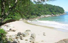 praias de Porto Belo Porto Belo   Santa Catarina