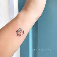 Seashell+tattoo+by+Ana+Abrahao tattoo designs Tattoo Designs Women Just Can. Seashell+tattoo+by+Ana+Abrahao tattoo designs Tattoo Designs Women Just Can't Resist - TattooBlend Tattoo Girls, Girl Leg Tattoos, Star Tattoos, Mini Tattoos, Foot Tattoos, Cute Tattoos, Body Art Tattoos, Female Tattoos, Tattoo Forearm