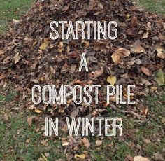 Composting – How to Get Started in winter