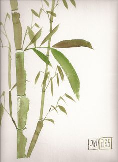 Bamboo at sunrise by Artbachs on Etsy, €27.40