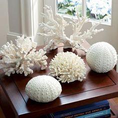Coloca conchas de caracol, corales o piedras de mar como accesorios decorativos, miniesculturas o dentro de floreros de cristal