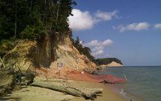 Calvert Cliffs State Park  / Lusby, Maryland (MD) / Calvert County