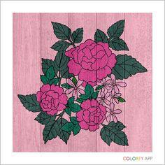    #colorfy #painteditmyself #coloringbook #cute #beautiful #love @colorfyapp
